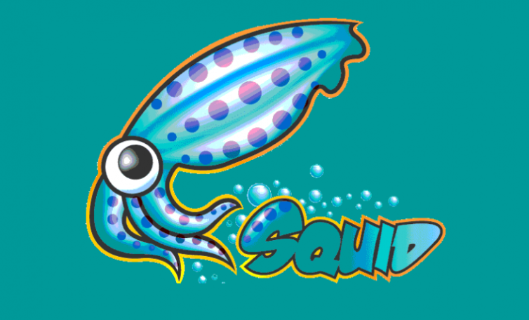 squid_proxy_logo-760x460